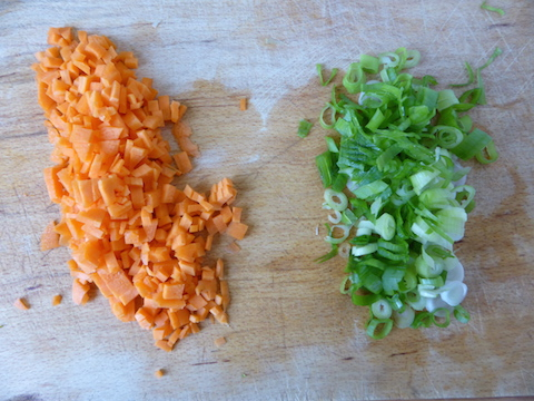 chopped carrot spring onion_web