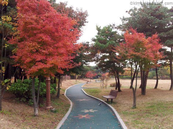 parco di Seocho