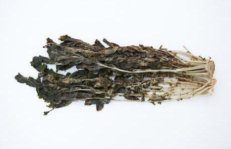 Foglie di rafano essiccate Siraegi